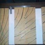trinité : tilleul 2) dessin au burin (crêtes et creux)